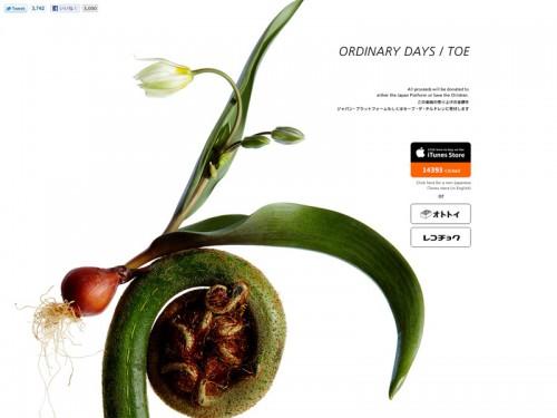 Ordinary Days / toe